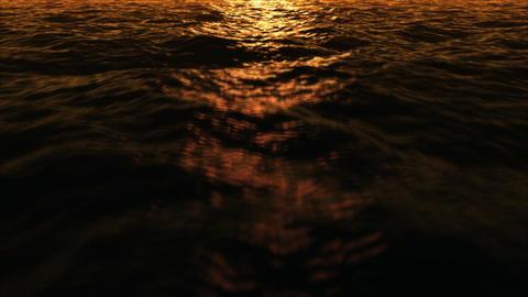 Water fly 2 sundown low Stock Video Footage