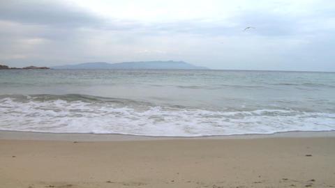 beach 111 Stock Video Footage