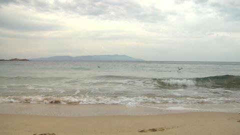 beach 205 Stock Video Footage