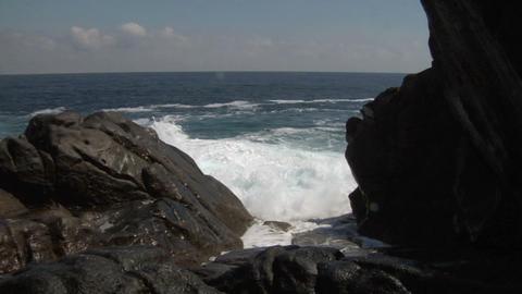 coast 137 Footage