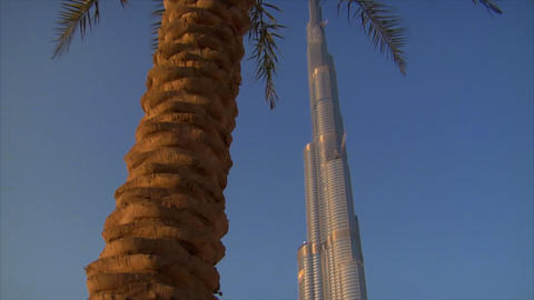 Palm at Burj Khalifa Dubai Stock Video Footage