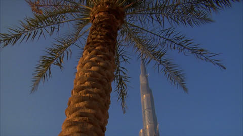 Palm at Burj Khalifa Dubai Footage