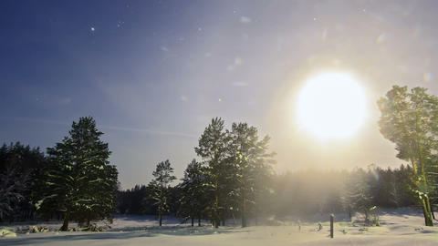 Moon over the forest. Winter landscape. Zoom. Time Footage