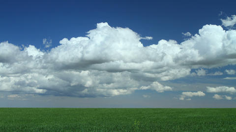 Spring Cumulus Clouds Over Grassy Meadow stock footage