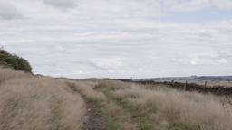 Open Moorland Stock Footage Footage