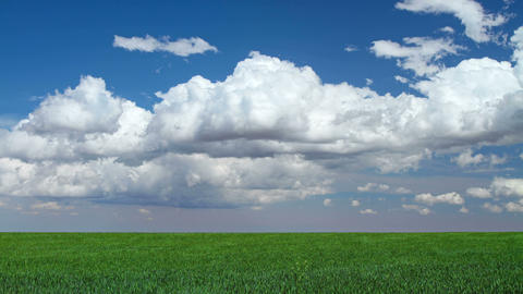 4K Storm Clouds Over Grassy Meadow stock footage