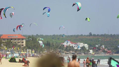 Kites Footage