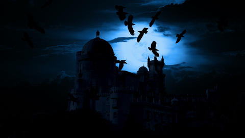 Night castle and birds Footage