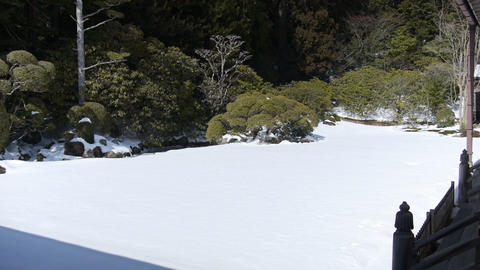 高野山 stock footage