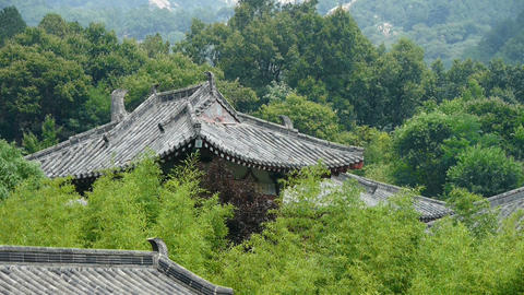 China ancient architecture in bamboo forest Animation