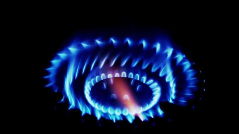 Natural gas inflammation in stove burner,close up view on dark background Animation