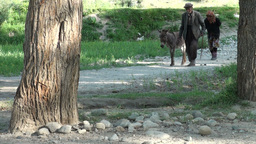 Senior couple walk donkey in rural Tajikistan Footage