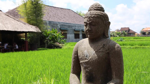 Budda Statue In Ubud stock footage