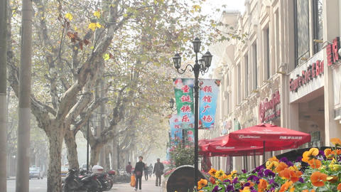 busy tree lined street in the french concession Footage