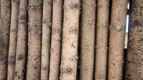 Eco-friendly Wooden A Pole Fence From Pine Wood stock footage