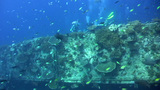 Bounty Wreck, Gili Islands, Lombok Footage