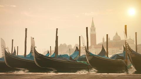 Venetian gondolas tied near the pier on San Marco Footage