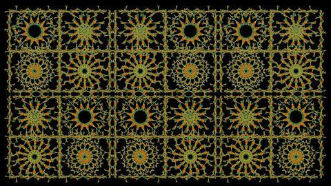 FBT 10829 P 01 KLS 24a 1 Qt Png 99 Curcuma ionodor Footage