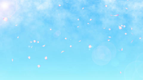 sakura blue sky loop HD Stock Video Footage