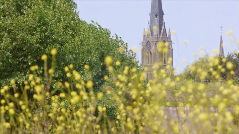 Flowers with Cathedral in The Background in Weesp, Holland, The Netherlands Footage