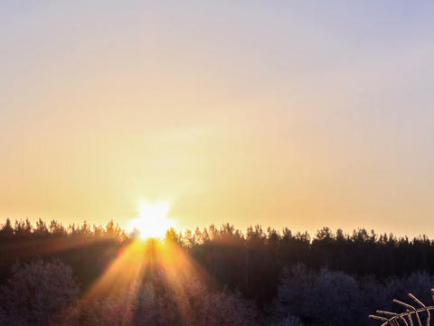 Sunrise over the winter forest. Time Lapse. 640x48 Footage