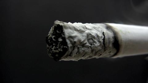 Burning Cigarette Macro - Time Lapse Live Action