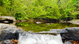 【Nature】Small Water Fall Footage