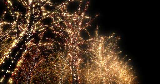 illumination tree neon 4k B 4 Animation