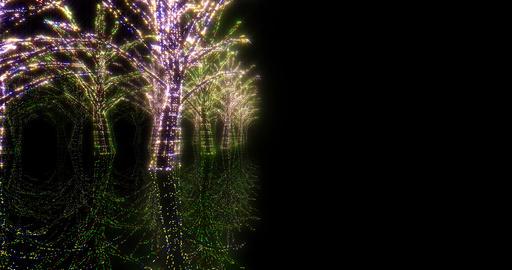 illumination tree neon 4k Hh 2 CG動画