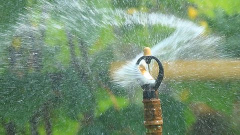 Water Sprinkler 0