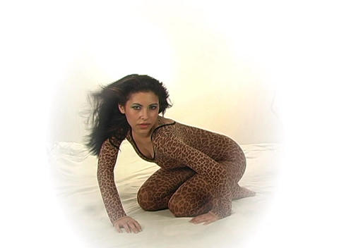 Sexy Young Woman in a Leopard Bodysuit Footage