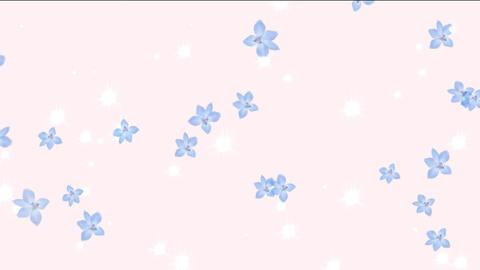 flower1 Stock Video Footage