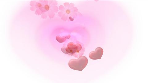 flower3 Stock Video Footage