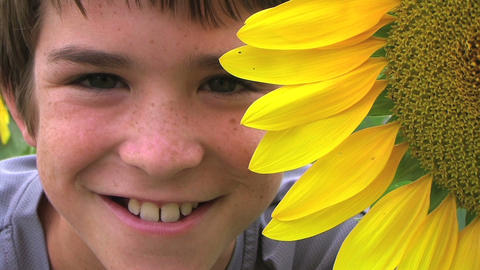 Boy Beside Sunflower Footage