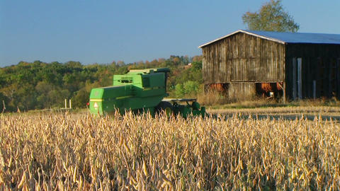 Combine Harvesting Soybeans 05 Stock Video Footage