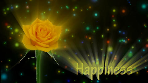 "Yellow rose ""Golden gate"" color meaning ""Happiness"" 2a alpha matte Animation"