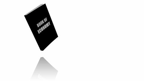 Black Book Of Economy Stock Video Footage