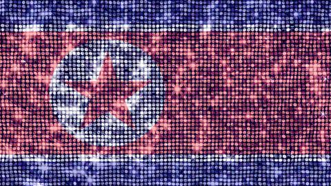 Spangle Flag Korea DPR Stock Video Footage