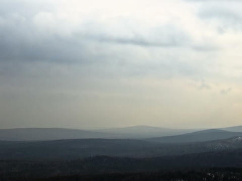 Clouds over the forest. Time Lapse. 640x480 Footage