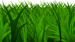 Grass rapidly growing Stock Video Footage