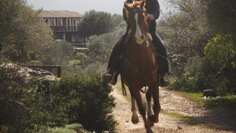 Man Riding On Sardinia Horse, Italy Stock Video Footage