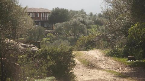 Woman Riding On Sardinia Horse, Italy Stock Video Footage