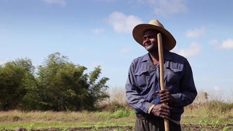 Farmer and Agriculture Cuban Peasant in The Field Stock Video Footage