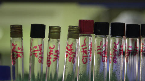 People and Science Staff Member at Work As Chemist Stock Video Footage