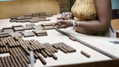 African American Woman Working In Cigar Factory In stock footage