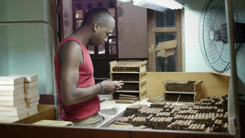 People and Industry Manual Worker in Cigar Factory Stock Video Footage