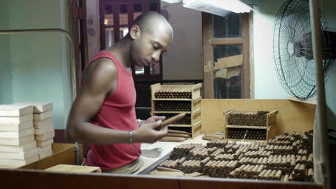 People and Industry Manual Worker in Cigar Factory Footage