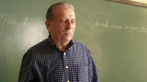 Teacher Explaining Lesson To Students During Class Stock Video Footage