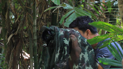 bird and wildlife photographer Stock Video Footage