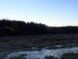 Dawn over the frozen swamp. Panorama. Time Lapse. Stock Video Footage